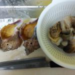 久々にツブ貝を買った!